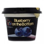 BIO FOB BLUEBERRY FRUIT YOGHURT 200ML