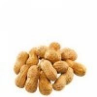 FRESH GROUNDNUTS