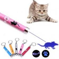Pet Toys & Accessories